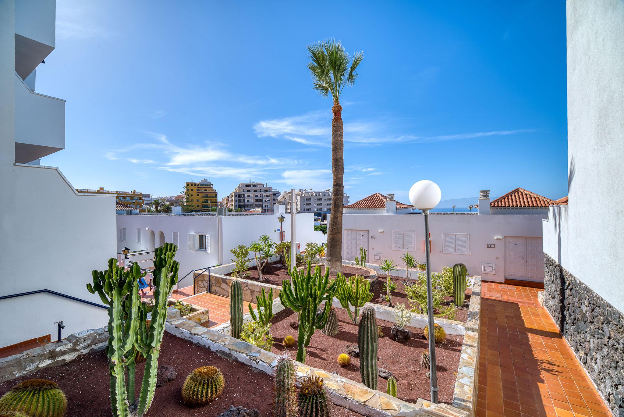 Hotel Marques Cactus Garden